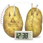 Kartoffeluhr, Zitronenbatterie, Obstbatterie